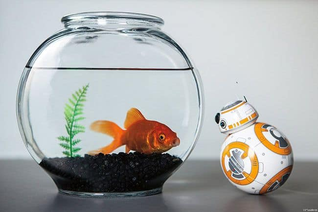 sphero_bb8_droid_robot